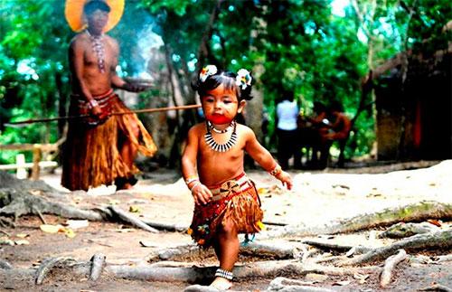 porto seguro reservas indigenas